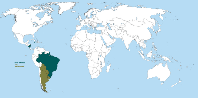 File:A large blank world map with oceans marked in blue-0.png