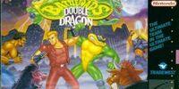 Battletoads/Double Dragon