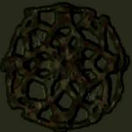 Ctf1 shell