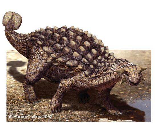 File:Ankylosaurus1-1.jpg