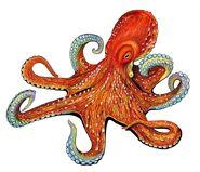 OctopusPORCOP16