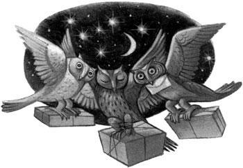 C01--owl-post