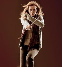 Hermione-Granger-hermione-granger-21277742-500-538