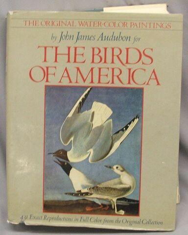 File:BirdsofAmericaCover.jpg