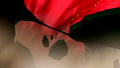Thumbnail for version as of 16:08, October 25, 2015