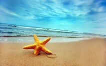 Summer-at-lonely-beach-1440x9001
