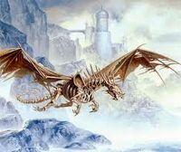 Drakgon2