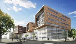 Stetson University of Higher Learning