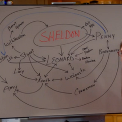 Amy diagrams the premise how Sheldon has affected everyone.