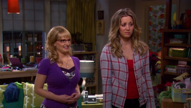File:Penny and Bernadette look at the painting.png