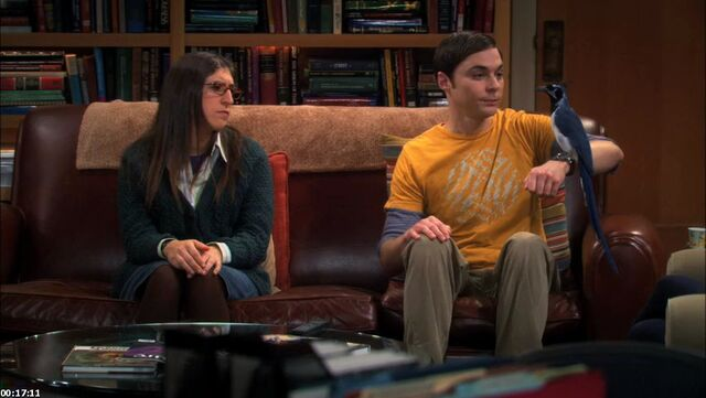 File:S5EP09 - Sheldon with Lovey Dovey.jpg