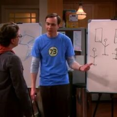 Sheldon describing the