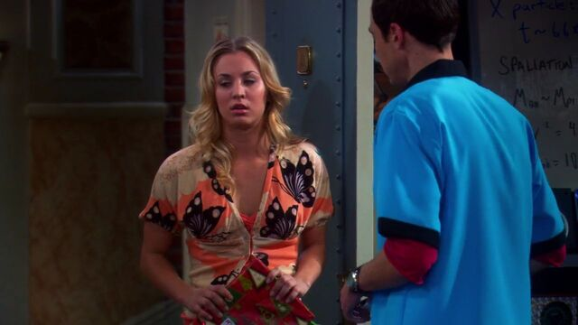 File:Penny and Sheldon The Bath Item Gift Hypothesis.jpg