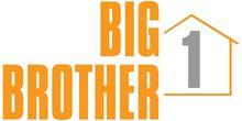 BigBruv's Big Brother 1 USA