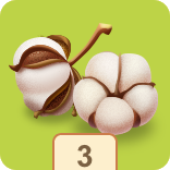 File:Cotton3.png