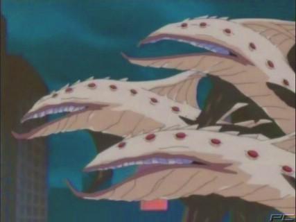 File:Hydra Eel-2.jpg
