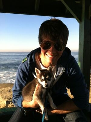 James & Fox