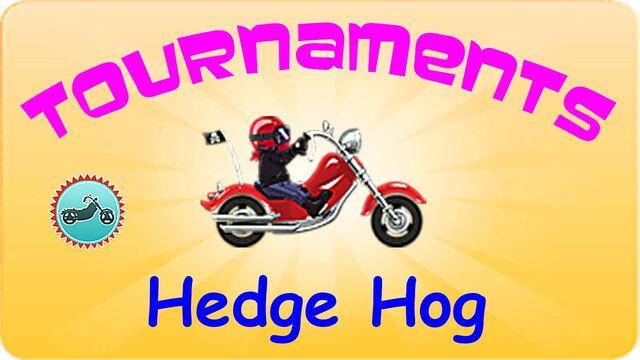 File:Hedgehog.jpg
