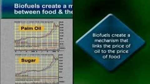 The Myths of Biofuels - Trailer Teaser