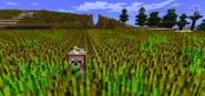 Minecraftfield