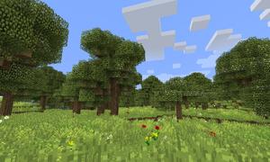 Orchard1 9 4