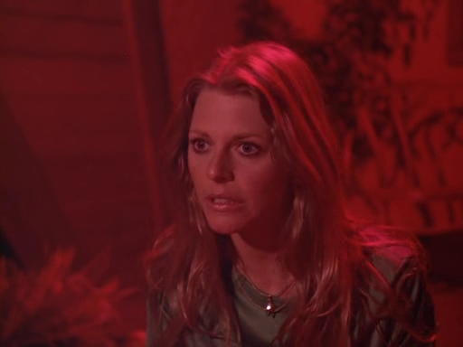 File:The.Bionic.Woman.S03E16.DVDrip.XviD-SAiNTS.avi 002170280.jpg