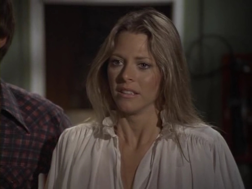 File:The.Bionic.Woman.S03E02.DVDrip.XviD-SAiNTS.avi 000852120.jpg