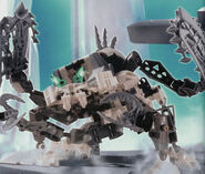Frost Beetle