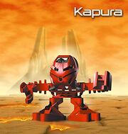 Kapura Tohunga