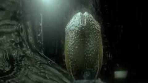 Alien Vs. Predator - Pain