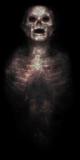 Zombie spirit