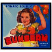 Vintage sunbeam orange fruit crate label poster-r27dd42b2ed324ce683f6ca9d825400e6 7khz 8byvr 512
