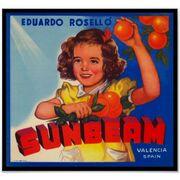Vintage sunbeam orange fruit crate label poster-r27dd42b2ed324ce683f6ca9d825400e6 7khz 8byvr 512