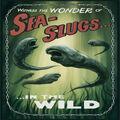 Sea Slugs in the wild advertisment.jpg