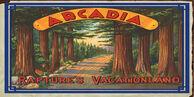 Arcadia Rapture's Vacationland Poster