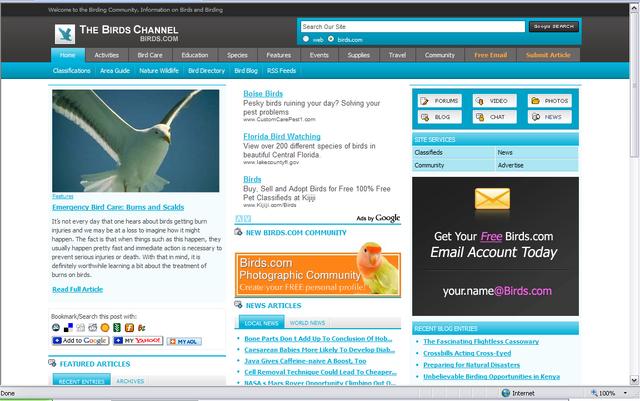 File:BirdsChannelScreenshot.png