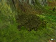 Forestartificial