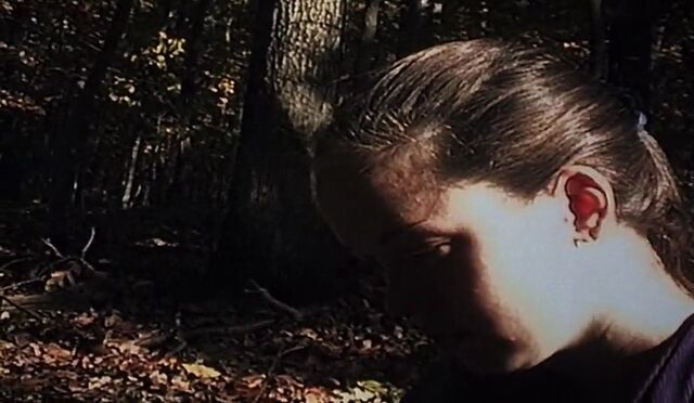 File:45692543148HF NL The Blair Witch Project 1999 m720p x264 500MB mKv DXT 3 parts.jpg