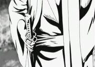 Shoyo's Blade