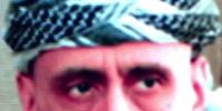 Tarek Ahmadi