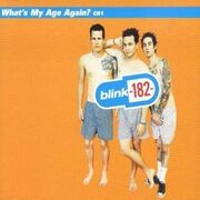 Blink-182 - What's My Age Again cover