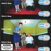 Blink-182 - Adam's Song cover
