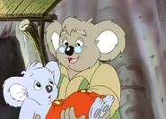 Mr.Koala 3