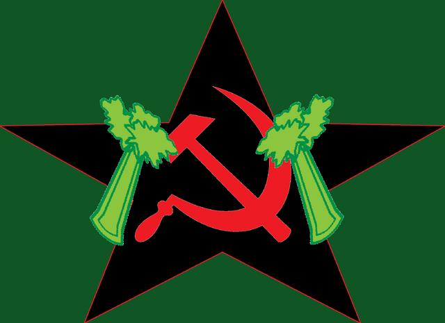 File:Final Vegan flag.png