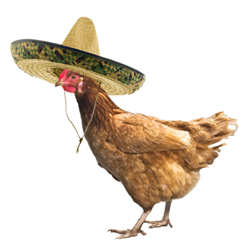 File:Chicken with a sombrero by muffinzor-d870ti4.png