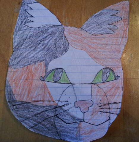 File:Calico-cat-by-willowstripe.jpg
