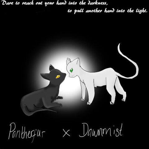 File:Dawnpanther.jpg