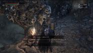 Frienzied death