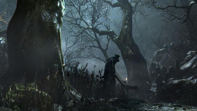 File:Dark forest 2.jpg