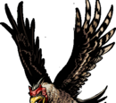 Ninja Hawk +